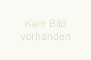 ein Boxspring-Einzelbett 100 x 200 cm, Kommode - Bild 13: Ferienhaus Kronprinz - Urlaub mit Hund an der Nordsee